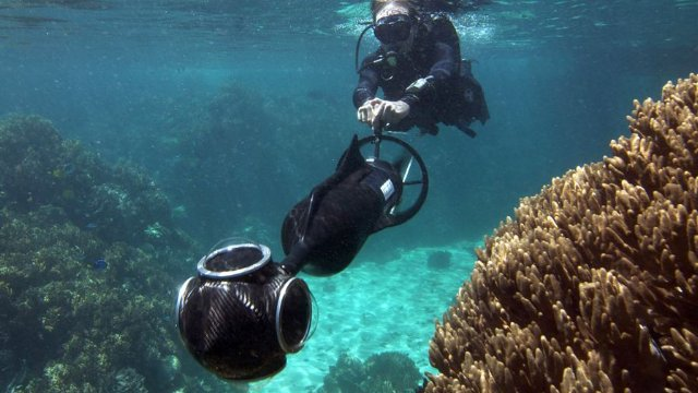 Click here to read Google Street View Is Coming to the Great Barrier Reef