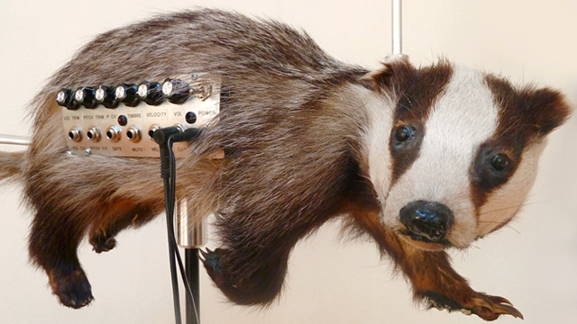 Click here to read Creepy Taxidermied Animals Now Make Creepy Music Too
