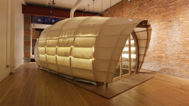 Happy little mushroom farm takes urban agriculture indoors