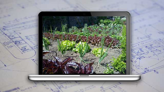 How to Use Tech to Plan and Optimize Your Garden