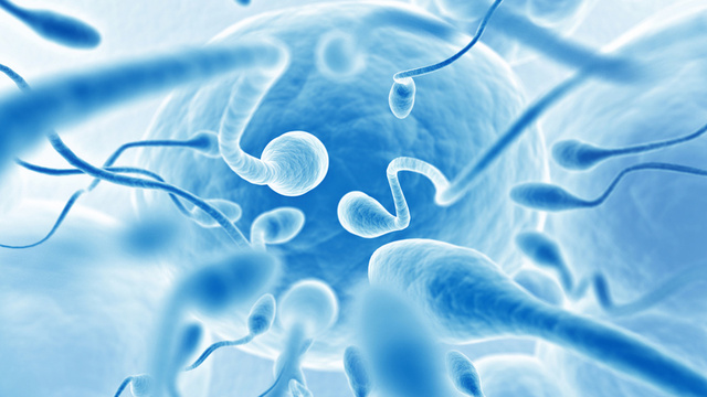 If You're Curious About Your Dude's Sperm Count, You Can Now Check the Swimmers at Home