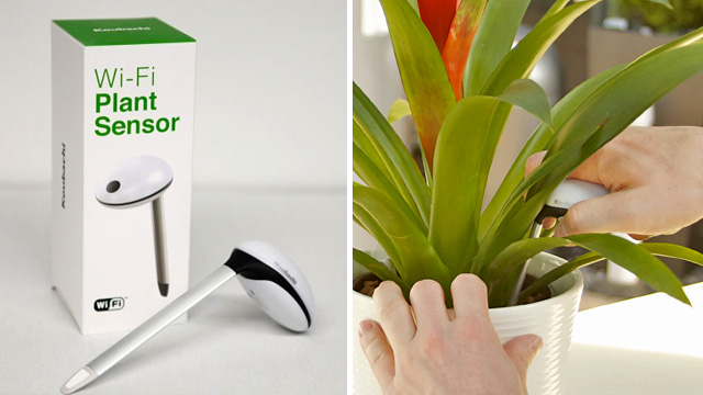 Click here to read W-fi Sensor Gives Your Dying Plants a Voice To Plead For Help
