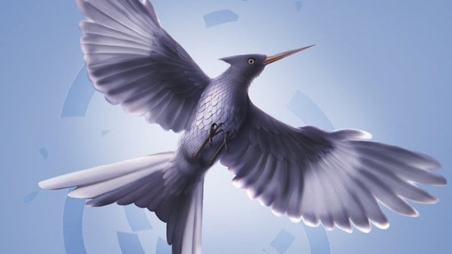 Feature-length Hunger Games fan film will explore what comes after Mockingjay