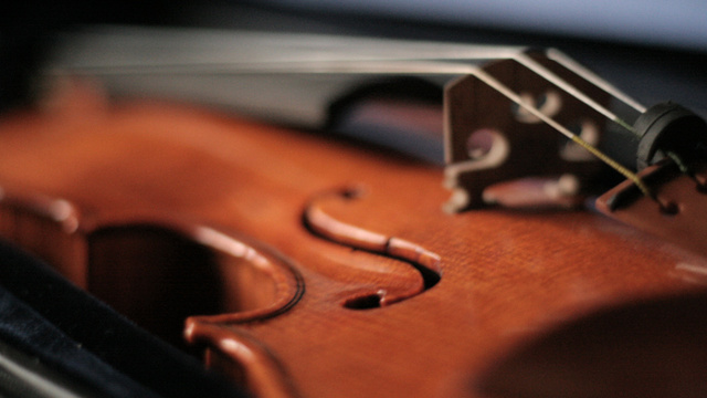 Violin Strings Made by Spiders Sound Smooth as Silk