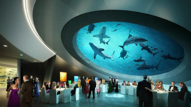 Shark Filled Atrium Belongs In a Supervillain's Lair, Not a Museum