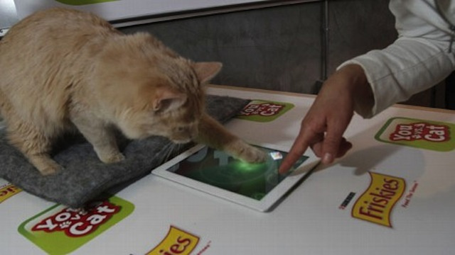 Here is a Video Game You Can Play Against Your Cat