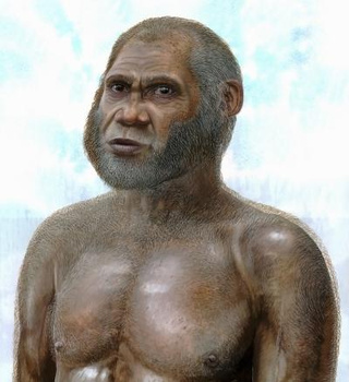 Scientists may have just discovered a brand new species of human