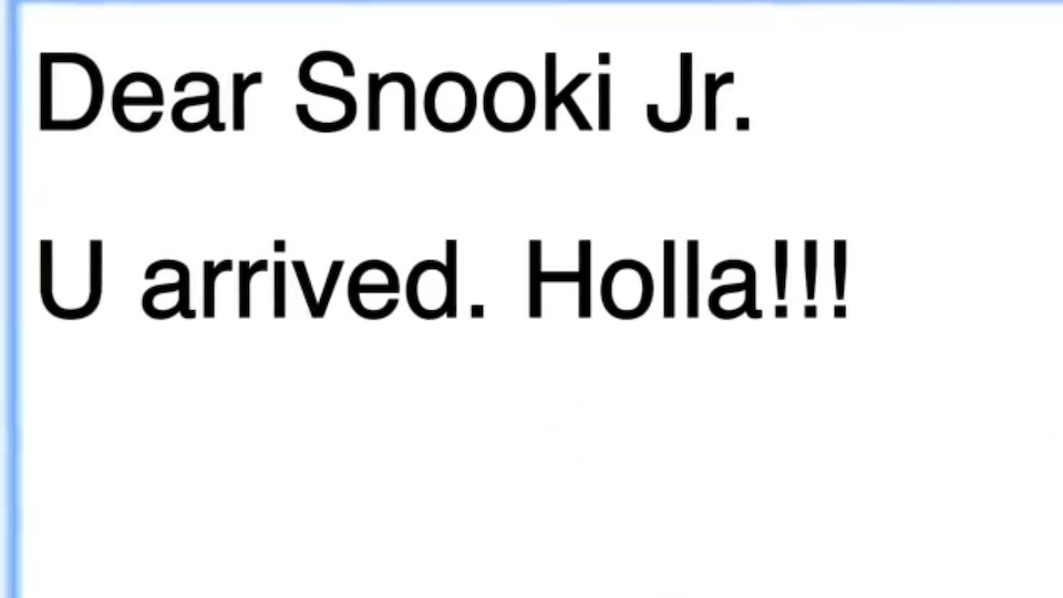 Click here to read Snooki's Scary Life as a Mom, Google Chrome Style
