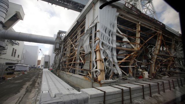 Over a Year Later, Fukushima's Radiation Is Still Fatal