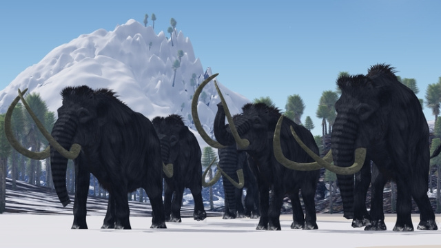 The last mammoths died out just 3600 years ago...but they should have survived