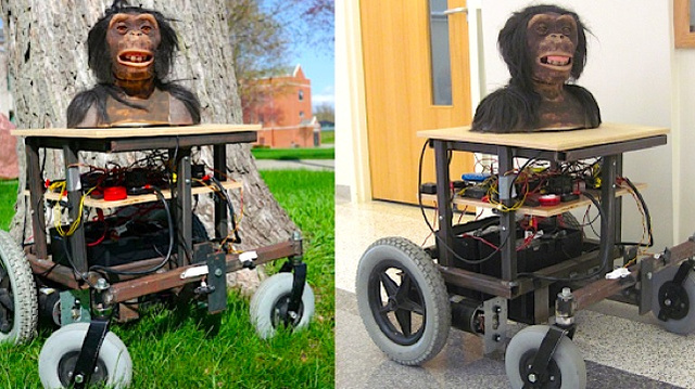 A Kickstarter project to build bonobos their own horrifying ape robots