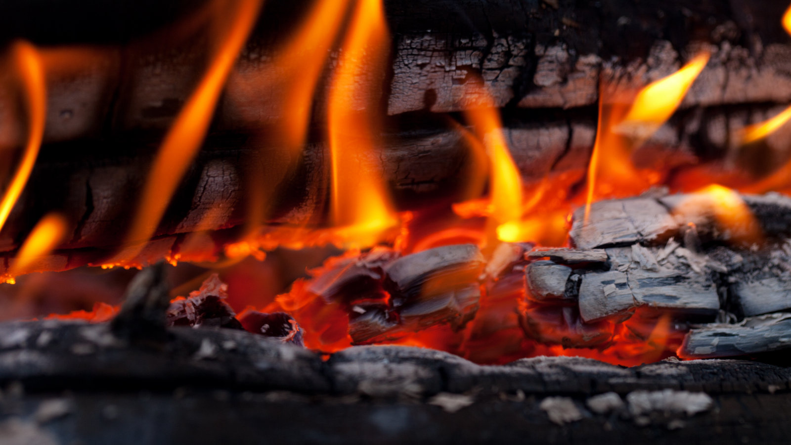 Click here to read Million-Year-Old Campfire Could Be One of Humanity's First