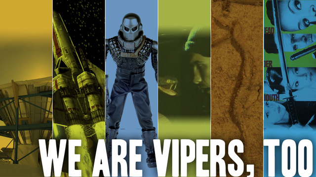 Did You Know There Are Other Things Called 'Viper'?