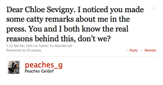 The Great Peaches Geldof/Chloe Sevigny Feud Of 2010