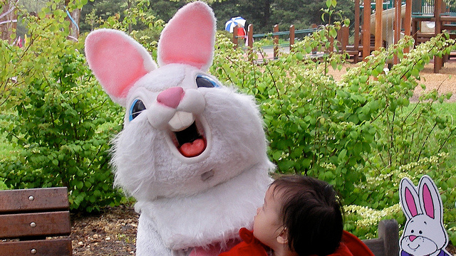 Easter Bunny Arrested for Drug Possession