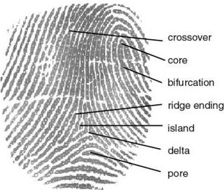 Your fingerprint at the scene of a crime doesn't prove anything
