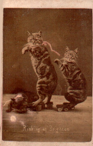 Even in the 1870s, humans were obsessed with ridiculous photos of cats