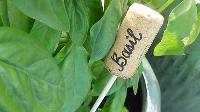 original Turn Wine Corks into Plant Markers