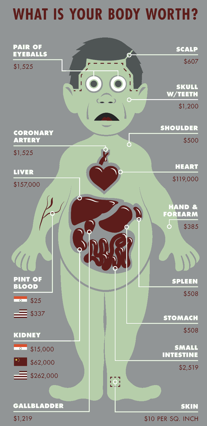 Here\'s How Much Body Parts Cost On The Black Market | Gizmodo Australia