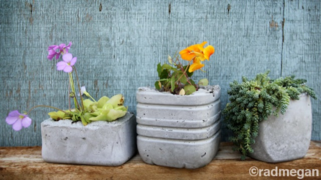 Make Sharp, Sturdy Concrete Planters from Your Kitchen Cast-Offs