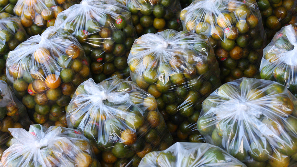 Plastic Grocery Bags Can Give You The Flu