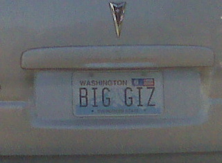 Gizmodo's Official License Plate