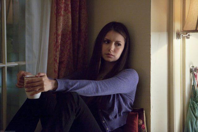 Vampire Diaries: A Wasted Moment of Clarity