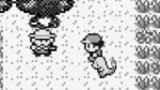 Click here to read The Dorkly Weekly: The Pokémon Bug Catcher Who Waited