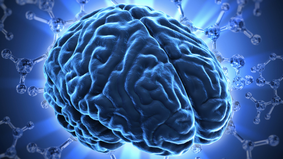 We're Heading Towards A Future Where Brain Scans Replace University Entrance Exams
