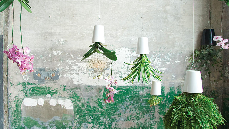 Upside-Down Planters Let You Grow Flowers In Tiny Spaces