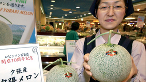 In Japan, Crap Times Means $12,000 Melons