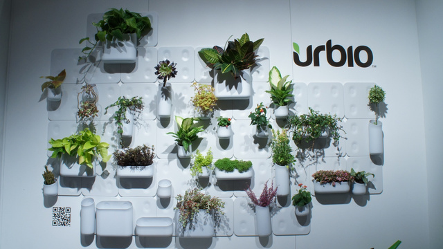 Indoor wall garden brings green to small spaces Holy Kaw