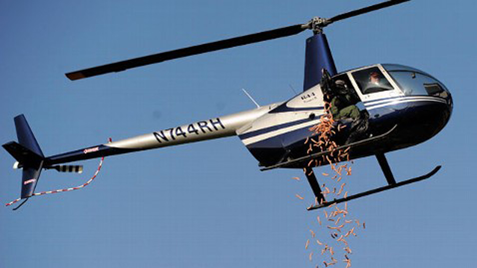Click here to read Helicopter Drops 955 Hot Dogs Over Detroit