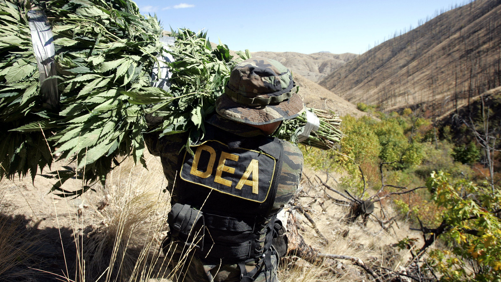 DEA Illegally GPS-Tracked a Drug Runner, Now It Can't Enter 150 Pounds of Found Weed Into Evidence [Drugs]