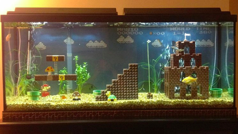 Do fire flowers still work in this awesome super mario for Aquarium pour poisson rouge