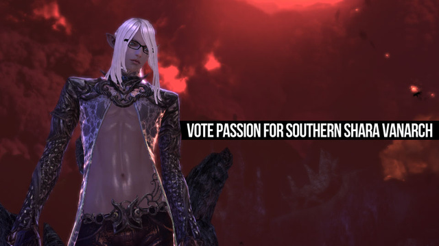 Tera MMO Log Part Four: The Political Process Begins