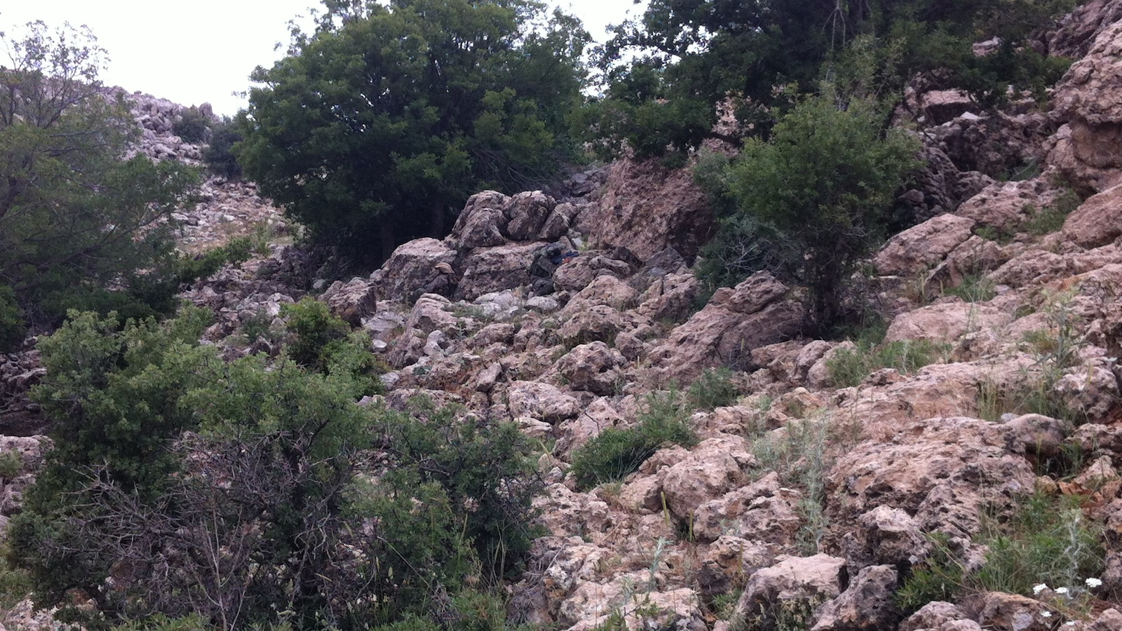 Click here to read Can You Find the Two Camouflaged Commandos in This Photo Before They Shoot You?