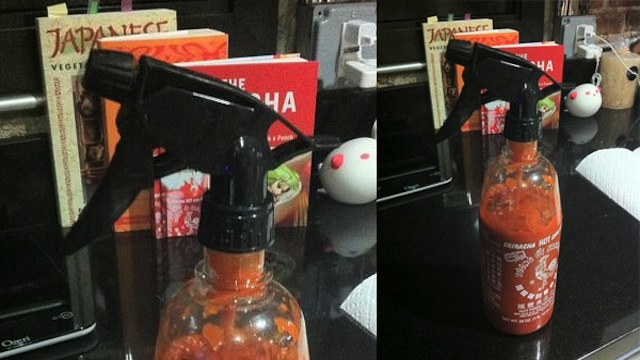 Click here to read If You Like Hot Sauce, This Might Change Your Life