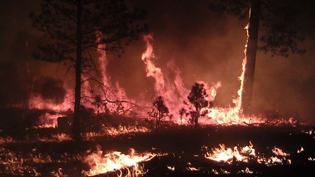 Click here to read Firefighters Finally Making Progress Against Largest Fire in New Mexico History