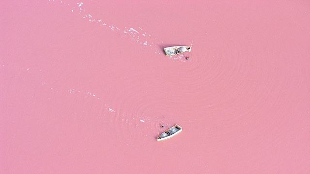 Super Salty Lake Looks Like a Strawberry Milkshake
