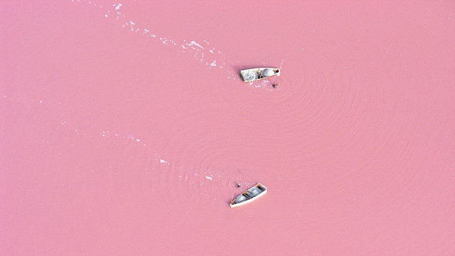 Click here to read Super Salty Lake Looks Like a Strawberry Milkshake