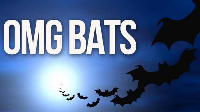You Can Turn Into a Cloud of Bats in Skyrim's Dawnguard Expansion. Bats.