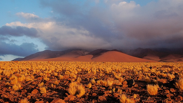 Click here to read The microbes in Earth's most arid volcanoes are unlike anything we've seen before