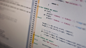 Why Do Some Programming Languages Live and Others Die?