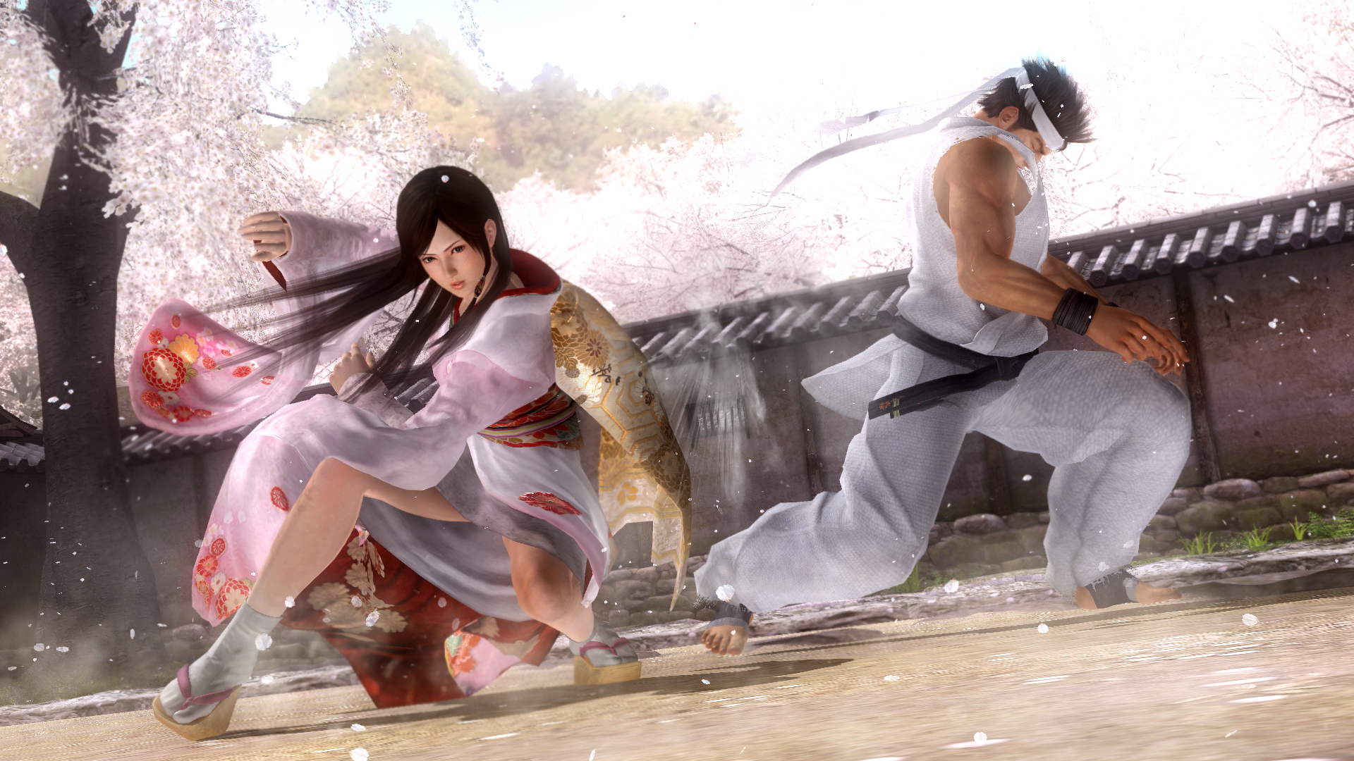 Click here to read Does Team Ninja Still Hate Other Fighting Games?