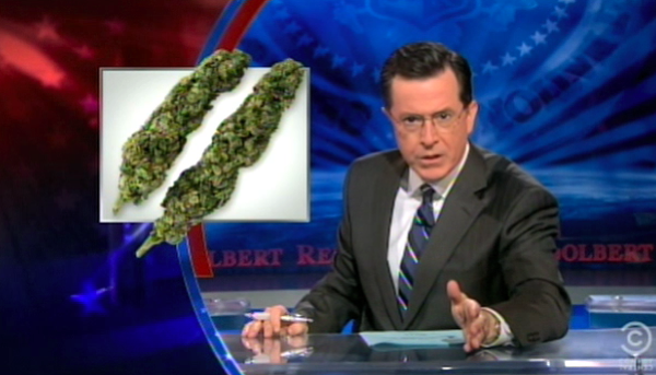 Click here to read Stephen Colbert Wonders If Marijuana Initiatives Will Drive Democrats to the Polls This November