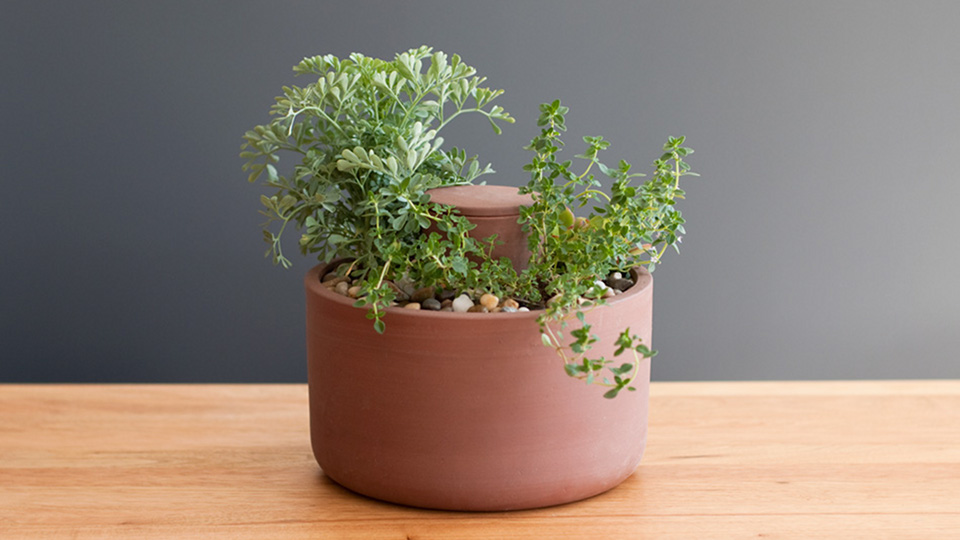 This Clever Pot Waters Itself
