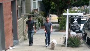 Mark Zuckerberg Walking His Fluffy, Rich Dog on a Cloudless Day