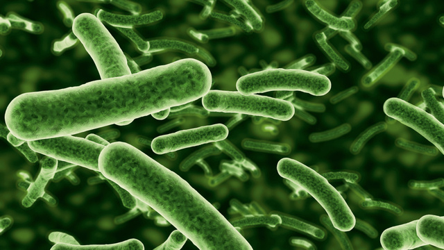 10 Ways the Human Microbiome Project Could Change the Future of Science and Medicine