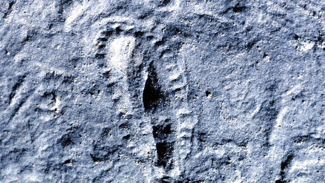 Fossils give hope that life can flourish on surprisingly primitive planets